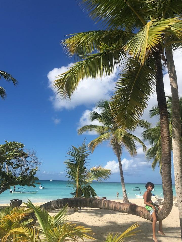 Abanico Beach Saona Island