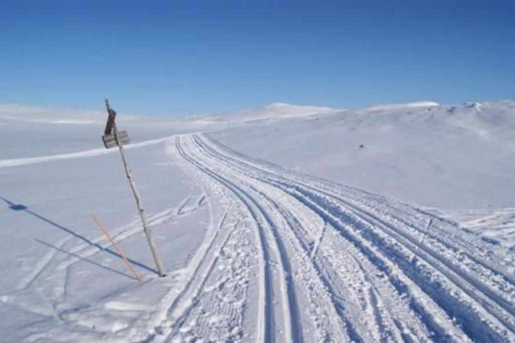 Skisporet 10 meter fra hytteveggen
