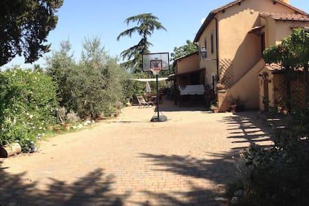 Un'oasi di pace a due passi da Roma - Laghetto - Wikt i opierunek