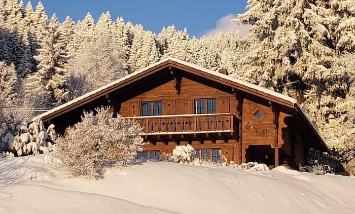GRYON Chalet: skiing, hiking, spectacular views