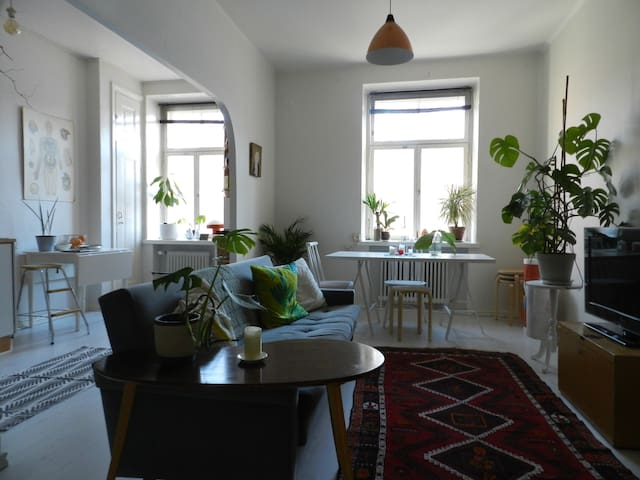 Spacious and cosy studio in the heart of Helsinki