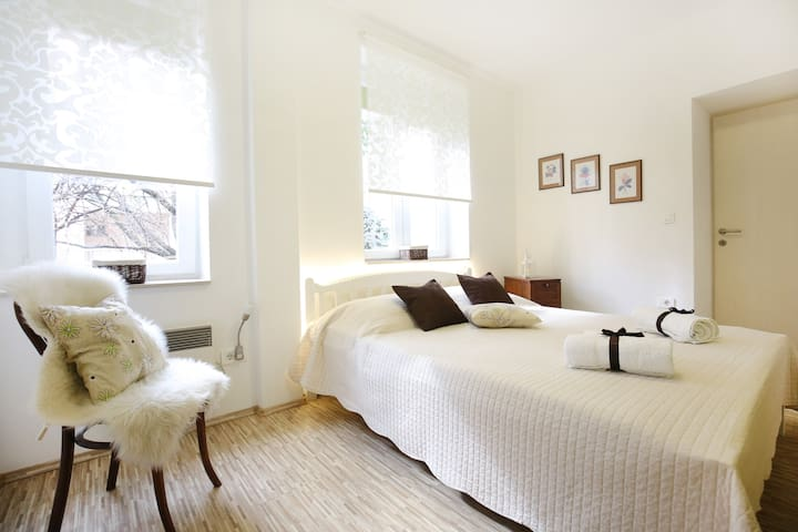Allegro - Clover Apartment - Zadar - Appartement