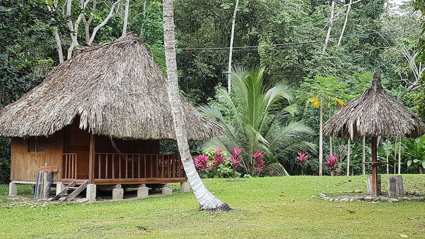 Lodge in the nature