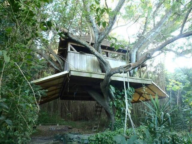 The Treehouse at Ridge to Reef Farm