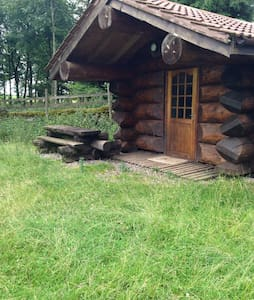 Mini traditional log cabin - 단독주택