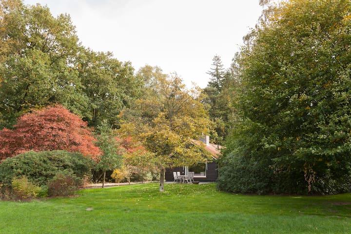 Comfortable cottage 'De Nink' in between forests