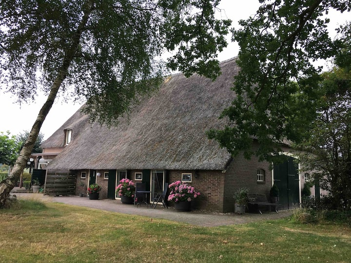 Gastenverblijf  'De Brink' in Saksische boerderij