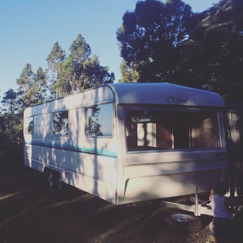 Cozy Caravan: Casa Del Sol - Waipapa - Kamp Karavanı/Karavan
