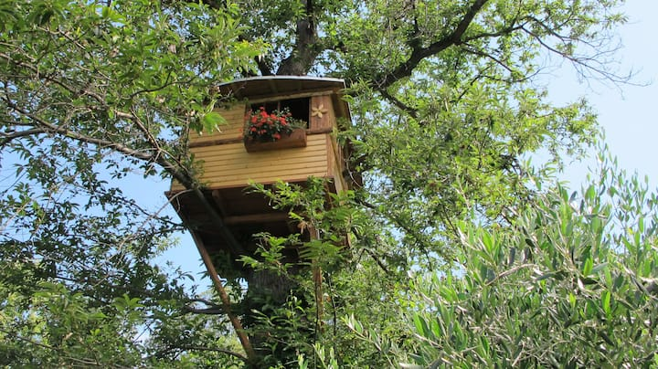 Treehouse on the chestnuttree