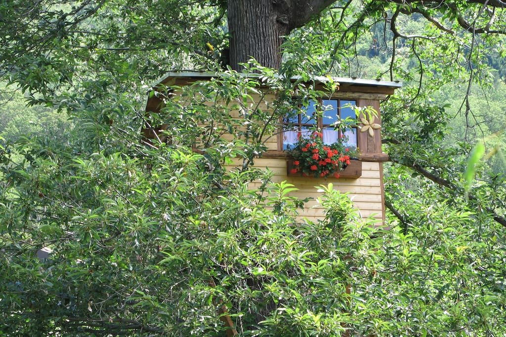 casa sull'albero primavera