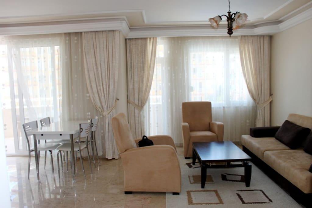 Гостинная с раскладывающимся диваном, ТВ и кухней американского типа