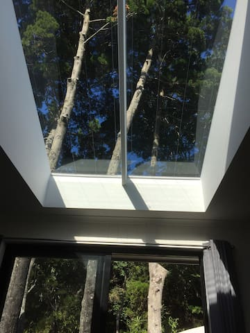 One of 2 glassed roof skylights with retractable blinds
