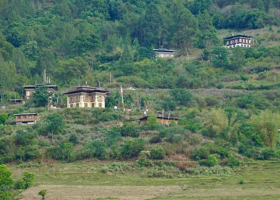 Namgay Zam Farmhouse at the Hill top