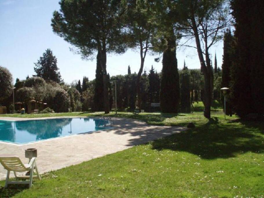 zona piscine (2)