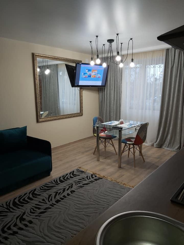 Квартира студия в центре