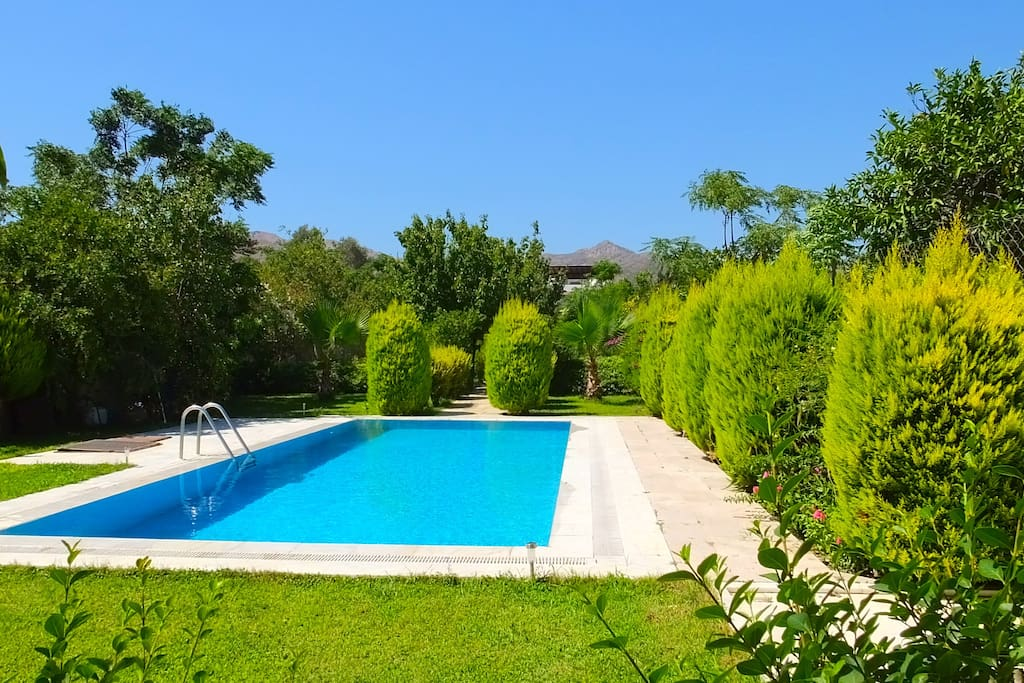 Nice and large pool