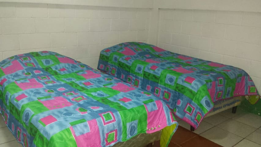 Renting  single bed!  free walk around the city