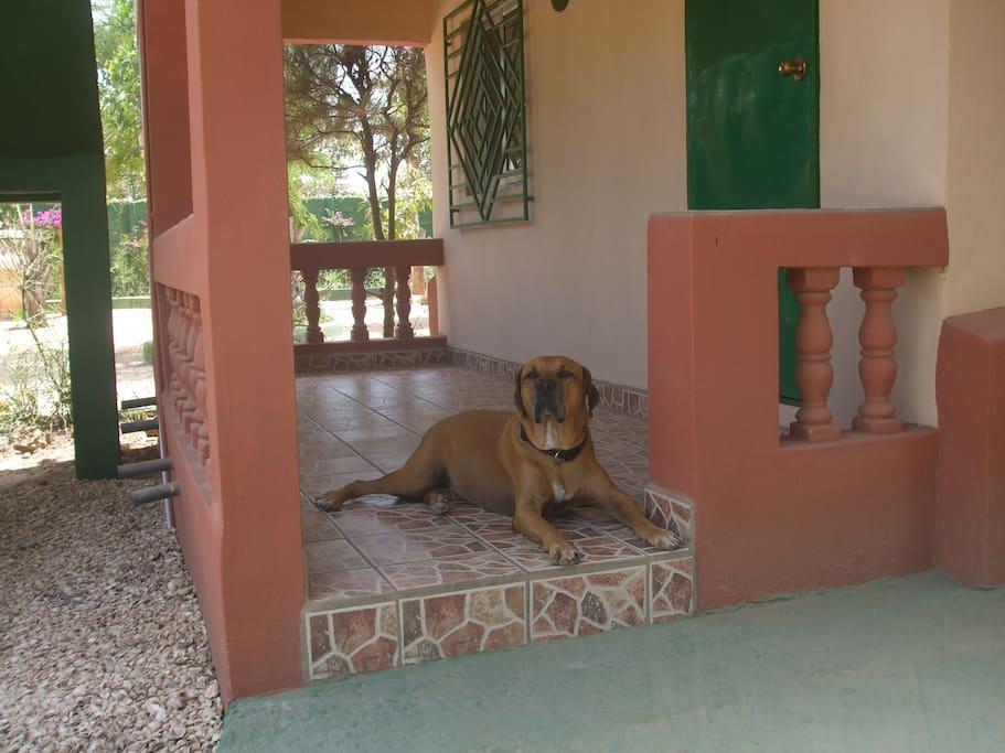 Mango-Haus 18 mit Veranda