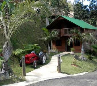 Rustic Log Cabins w/Pool Sleeps1-12 - Orocovis - Casa