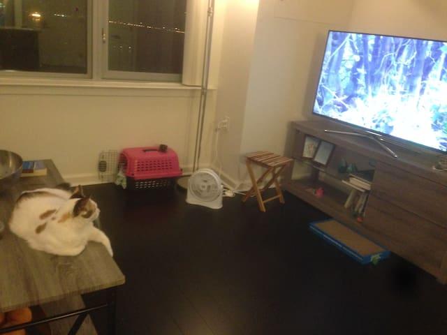 Apt in west new york - Brooklyn - Wohnung