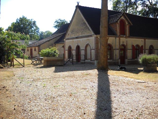 Logement individuel de charme - Nogent-sur-Vernisson - House