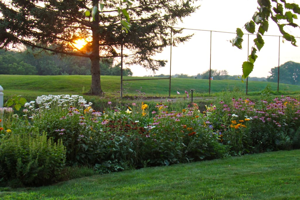 Front Garden at sunset, overlooking golf course