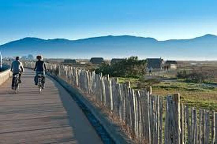 piste cyclable entre Mer et Etang de Canet