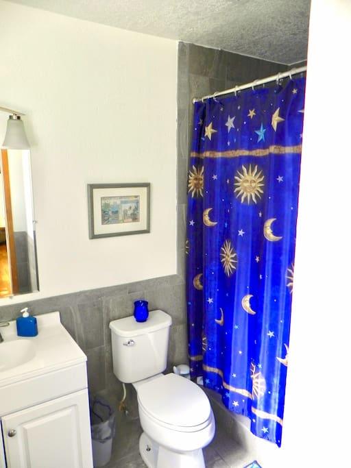 Master Bedroom Suite w/Bath