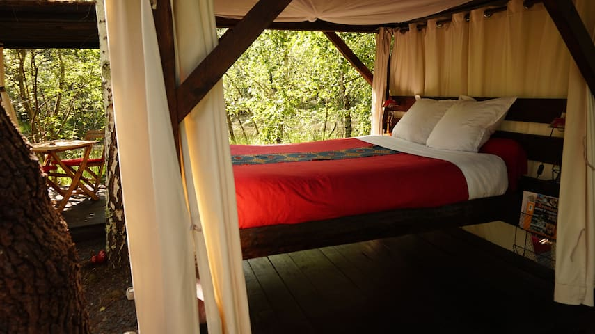 Chambre cabane sur une ile - Origne - Kulübe