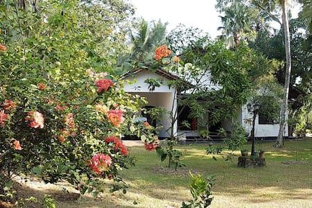 Aranga-La family bungalow in Colombo- Sri Lanka - Homagama