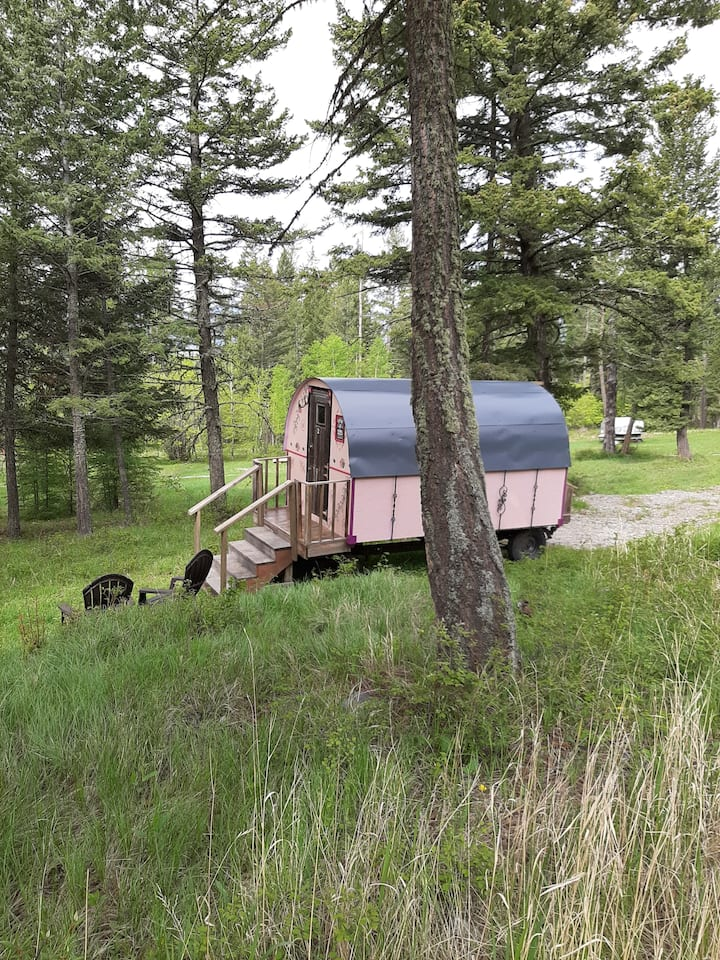 Gypsy Wagon