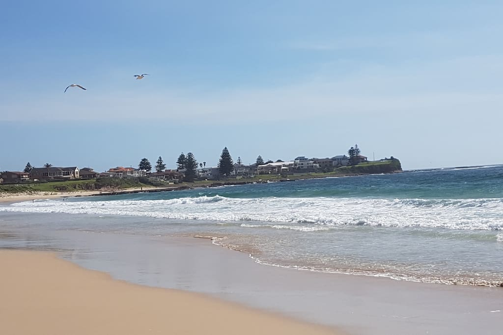 Shellharbour North Beach is about 7 minutes walk or 2 minutes drive.  Beautiful, Patrolled beach