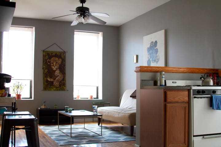 Cozy Private Room in Shared Wicker Park Apt.