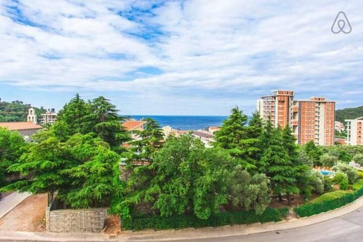 Уютная квартира на берегу Адриатики - Petrovac - Appartement