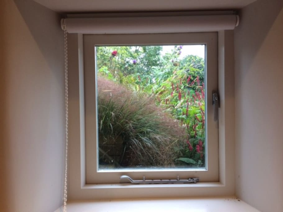 The framed view of the flower bed from The Pod