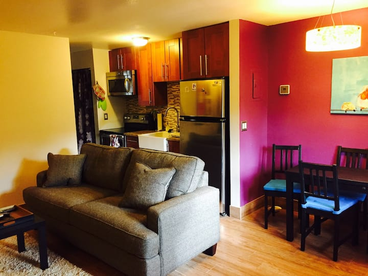 Sunny One-Bedroom In Town