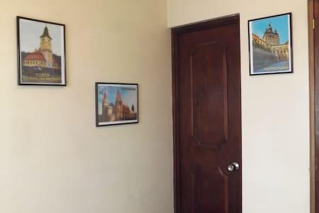 Single room, Transilvania Hostel 25$/night - San José