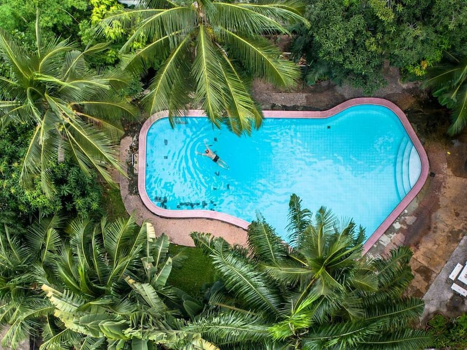 The papaya shaped pool