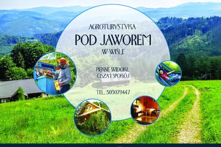 Cottage pod Jaworem