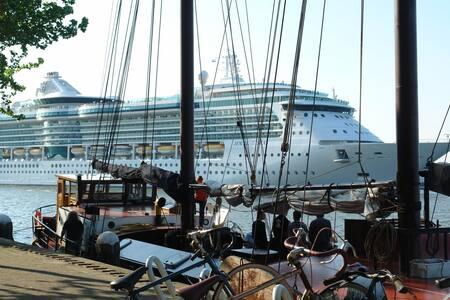 Panoramic Views SAIL 2015 - Amsterdam