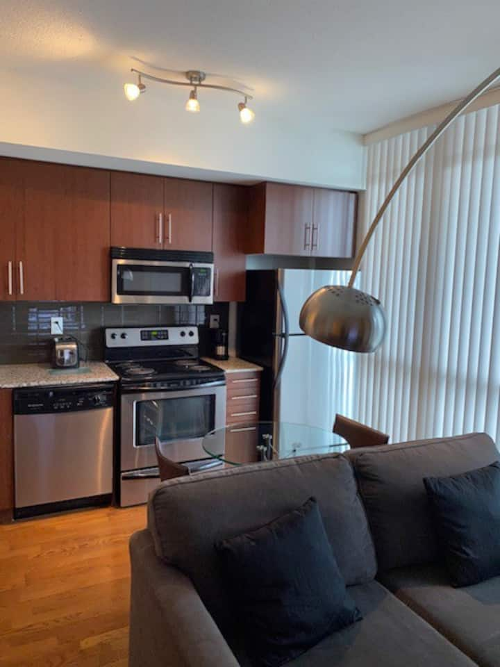 Executive & Professional 1 Bdrm Furnished Condo