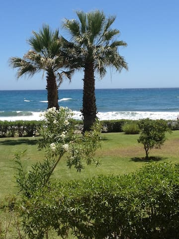 Beach front one bedroom ground floor apartment - Torrox - Lejlighed