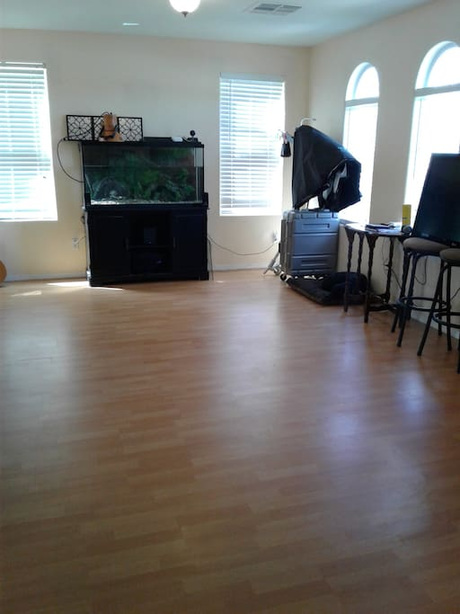 Living room, is a big open room with tic the turtle and fishes, dining table and it is attached to the kitchen.