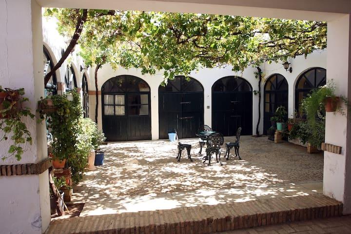 BODEGA 1721 10 minutos de SEVILLA - Alcalá de Guadaíra - Casa