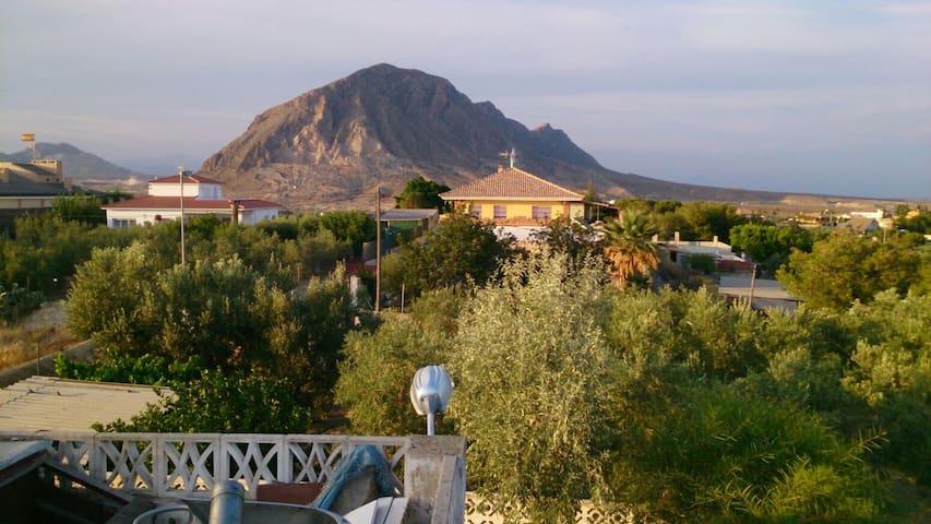 ALICANTE Campo,playa,piscina,relax - Alicante - Haus