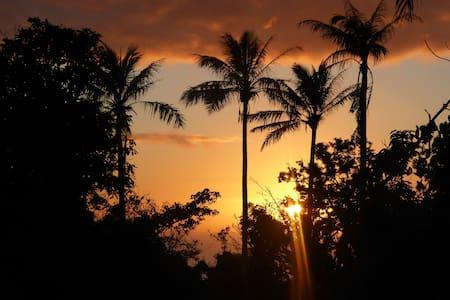 Sanddollar Vanuatu - Private Coastal Retreat