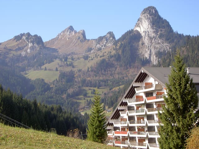 Swiss chalet-style flat w/ balcony - Torgon - Byt