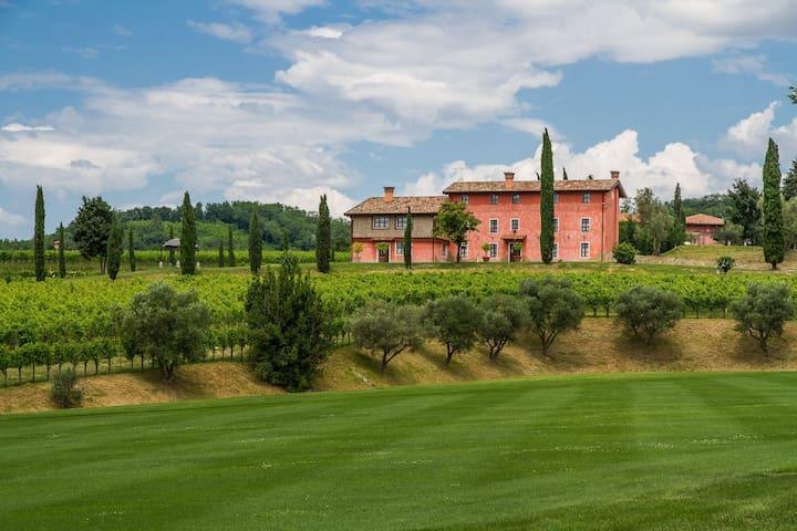 Appartamenti nelle Vigne - Capriva del Friuli