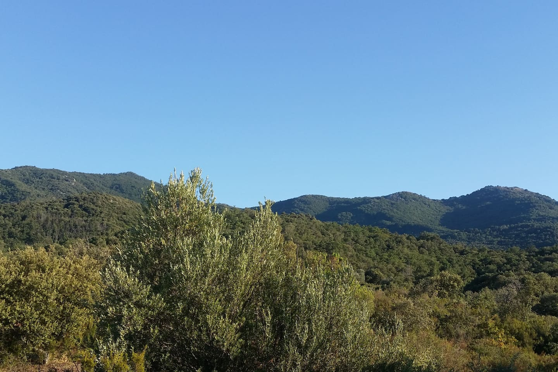 Terrasse avec vue sur les Albères