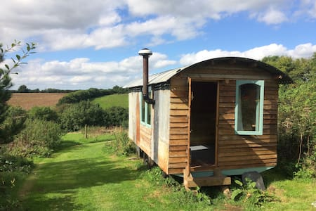 Eco hut in beautiful rural Cornwall - Saint Keyne - Pondok